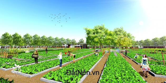 Dự án đất nền ven sông SaiGon Village sắp mở bán cơ hội đầu tư sinh lợi