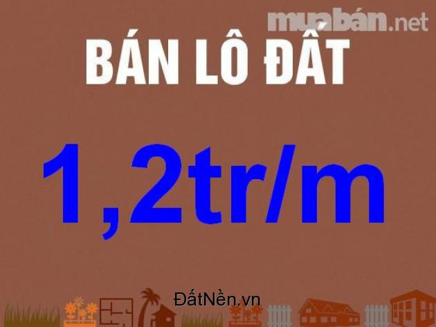 đất đồng nai xã long an giá 1.4tr đường quốc lộ 51