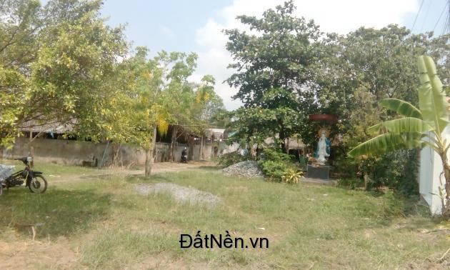 Cần tiền bán thửa đất có 1236m2 thổ cư tại Bình Chánh, giá chỉ 1,9 triệu/m2