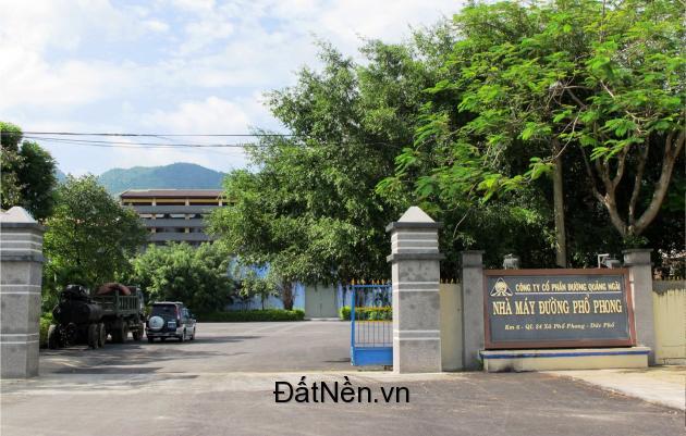 Bán 300m2 đất Nhà Máy Đường Quãng Ngãi - QL24-Phổng Phong