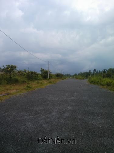 Bán đất nền thổ cư khu dân cư Đông phú, đường lộ Nam sông Hậu Huyện Châu Thành Tỉnh Hậu Giang
