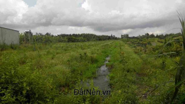 Bán đất nguyên thửa giáp lộ vĩa hè khu tái định cư Thị Trấn Ngã Sáu Huyện Châu Thành Tỉnh Hậu Giang