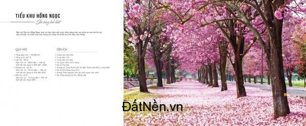 Cơ hội đầu tư đất nền sinh lời x2 x3 ở thành phố vệ tinh Đồng Văn Hà Nam