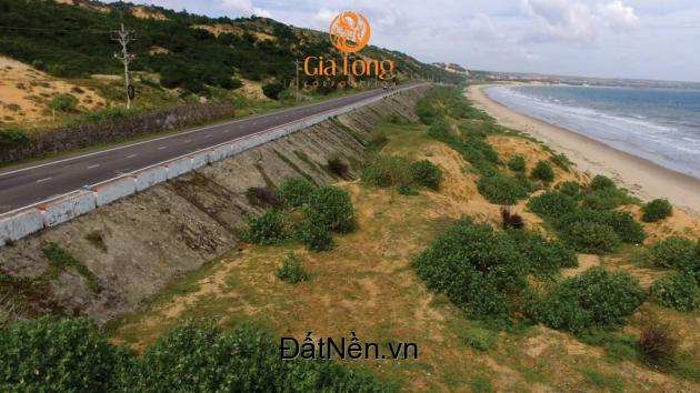 PALM VILLAS Đất nền Biệt thự mặt biển Mũi Né - Thủ đô RESORT