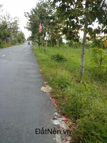 Đất mặt tiền tỉnh lộ 925 Huyện Châu Thành Hậu Giang
