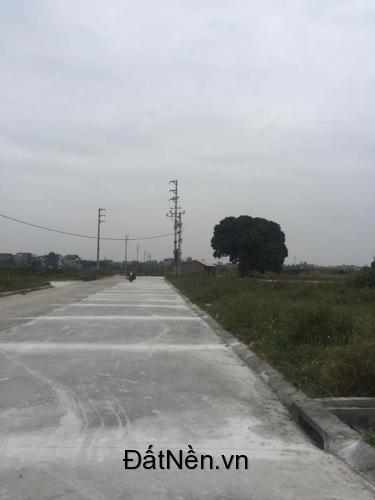 Bán đất Đình Tổ, Đình Tổ, Thuận Thành, Bắc Ninh