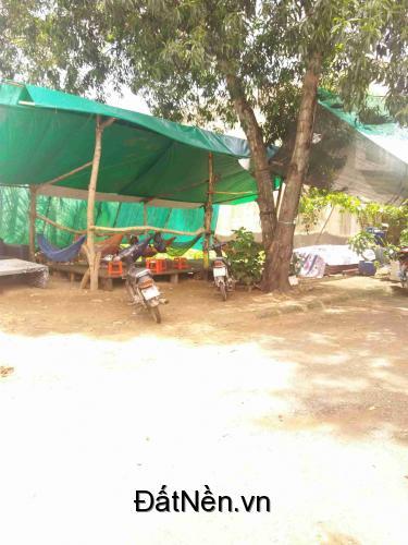 Đất thổ cư nhà bè giá 8.5tr/m2 hẻm 2 làn xe hơi Nguyễn Văn Tạo