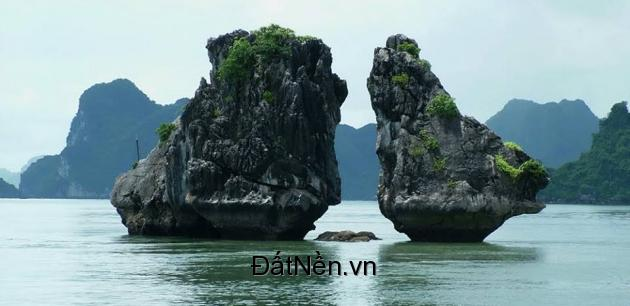 Cơ hộ vàng đầu tư 28 lô đất nền quảng ninh ngay bãi cháy view trực diện vịnh Hạ Long