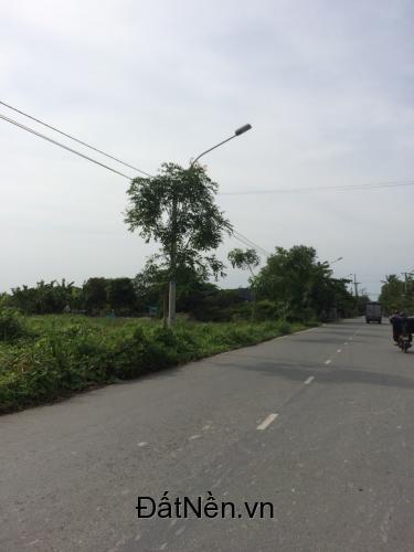- Sở hữu ngay 1200m2 đất xã Quy Đức, huyện Bình Chánh thành phố Hồ Chí Minh.