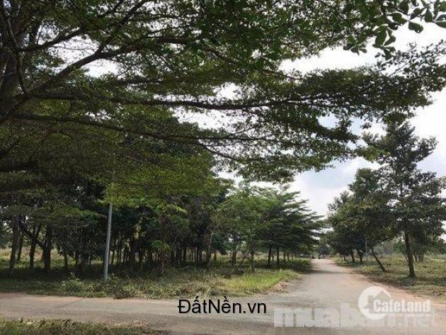 Đất nền 100% thổ cư tại TP.Biên Hòa – 6.5tr/m2