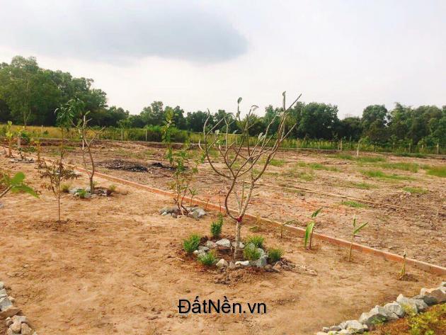 415m2 đất biệt thự vườn mt ĐH 20 ngay xã Phước Lâm đã có sổ chỉ 1,9tr/m2 lh:0934975328