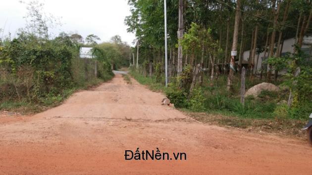 Đất Định Hòa, Thủ Dầu Một, Bình Dương giá rẻ, mặt tiền DX