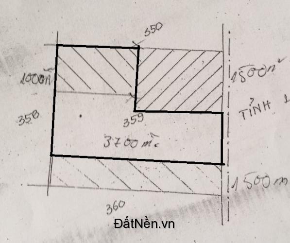 Cần bán 4700m2 đất vườn mặt tiền đường xe hơi ở Bình Chánh, tp.HCM. 2,5tr/m2.