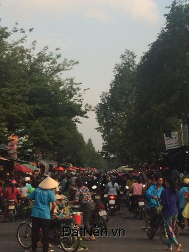 Chính chủ thanh lý nhanh 300m2 vị trí đẹp phù hợp xây khách sạn nhà nghỉ ở Mỹ Phước, thị xã Bến Cát