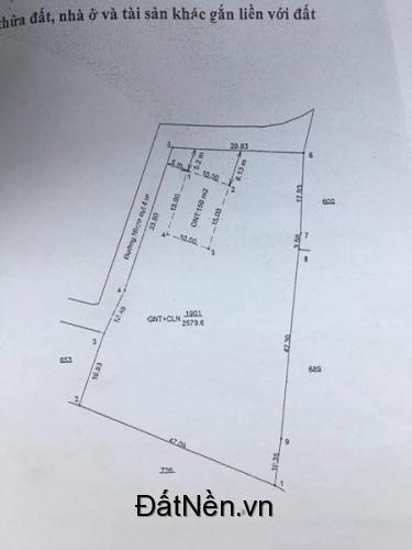 Đất Diện Tích Lớn - Xây Nhà Xưởng - Gần Ngã 4 Phú Thứ Phú An - TX Bến Cát - Bình Dương