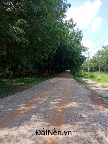 Đất nền giá rẻ tiềm năng  Chơn Thành – Bình Phước Chỉ từ 270Tr/Nền –LH :0963.097.087