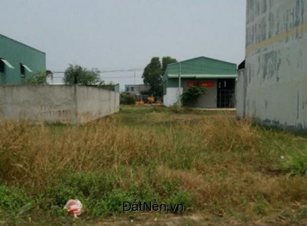 Bán gấp lô đất DT 160m2 Phong Phú Bình Chánh ngang 8m