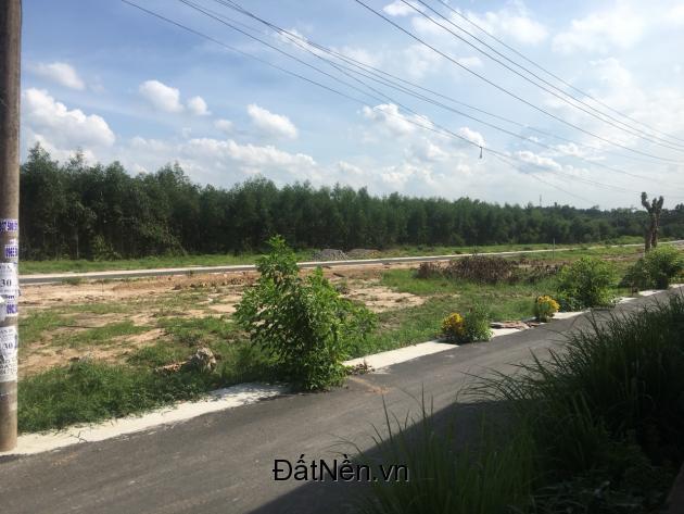 Đất nền Tam Phước, tp Biên Hòa thổ cư 100% , diện tích 100 - 121m2, đường 8m