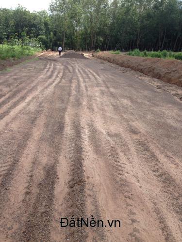 Bán đất liền kề KCN Bàu Bàng. 2tr/m2, thổ cư, SHR. LH: 0902403433