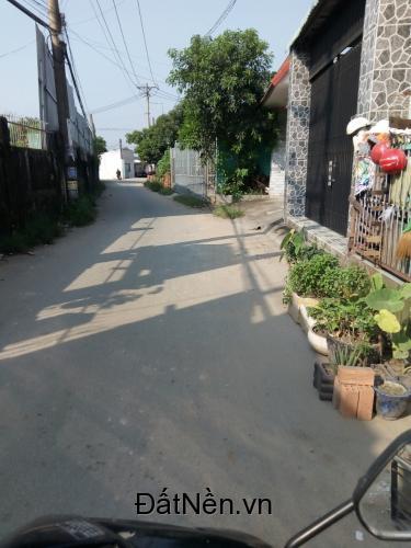 Đất Tân Hạnh TP.Biên Hòa, giá cực rẻ , vị trí đẹp , liên hệ ngay