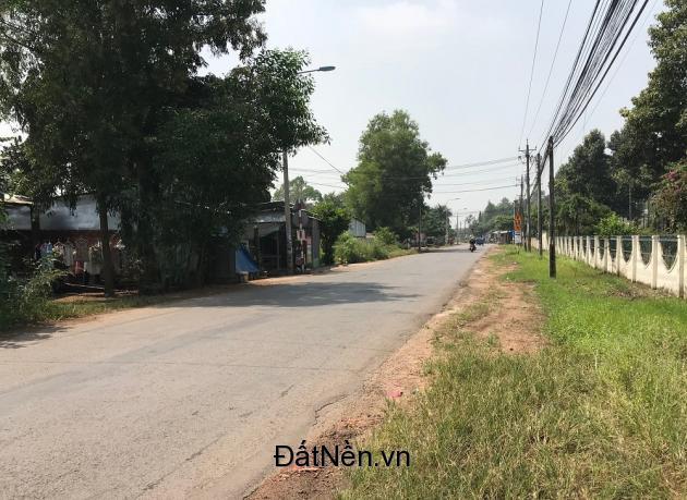 Bán đất Bàu Cạn, đón đầu thành phố sân bay Long Thành chỉ 800 triệu/sào.