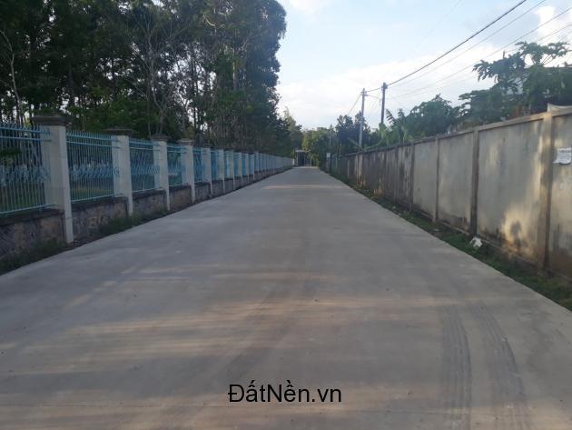 8 sào đất Bàu Cạn giá chỉ 6.65 tỷ, thị trường tiềm năng đầu tư đón đầu sân bay Long Thành.