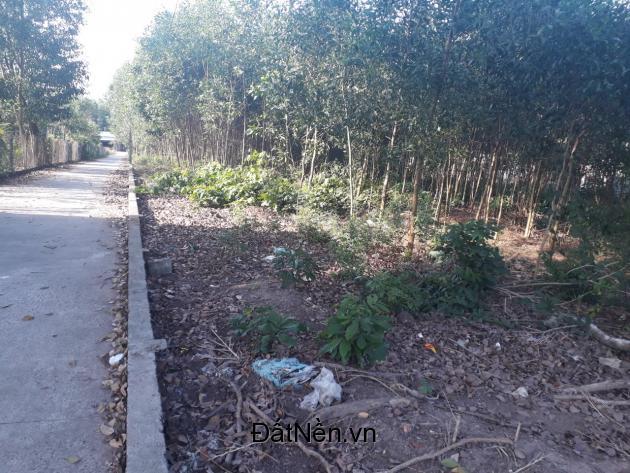 Chính chủ bán 1 mẫu đất Tân Hiệp gần sân bay Long Thành chỉ 18 tỷ giá tốt cho các nhà đầu tư.