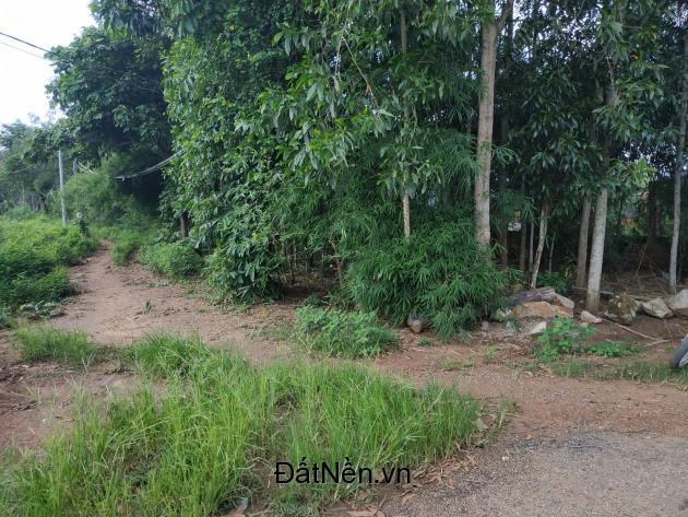 Bán gấp 500m2 đất xã Phước Bình, chỉ 1.5 tỷ giá bán liền trong tháng, sổ hồng chính chủ