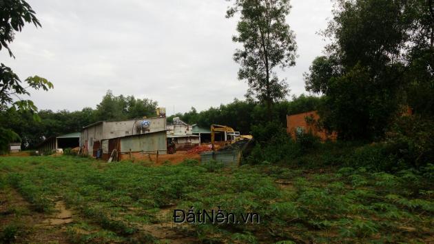 Gần 3400m2 đất xã Tân Hiệp, Long Thành đường 7m ôtô quay đầu, giá chỉ 1 triệu/m2.