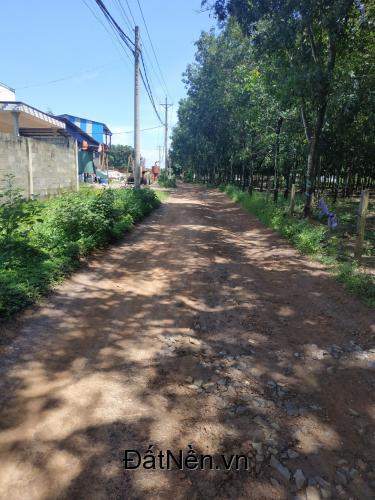Gần 1 mẫu đất đường xe tải vào tại xã Tân Hiệp cần bán, giá 1 triệu 350 nghìn/m2