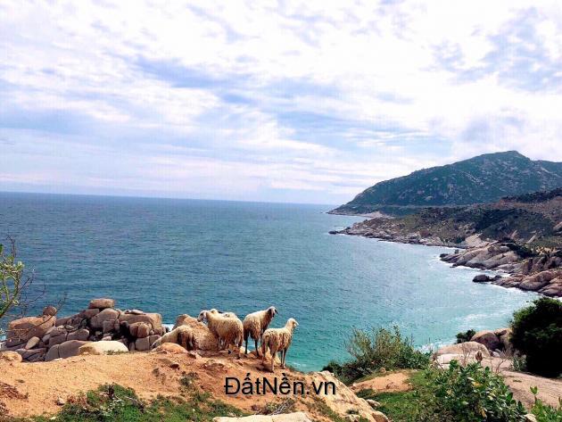 Sau Ninh Chữ Sailing Bay, Đâu Là Điểm Đến Đầu Tư Tiếp Theo?