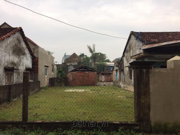 Cần ra lô đất số tờ 36 số thửa 175 Phù Cát, Bình Định.