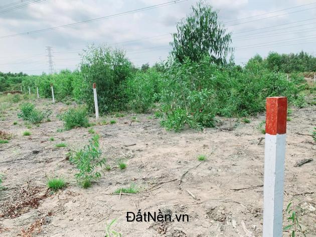 Bán đất vườn xã Vĩnh Thanh 1000m2 giá 800 triệu cách TP.HCM 20 phút