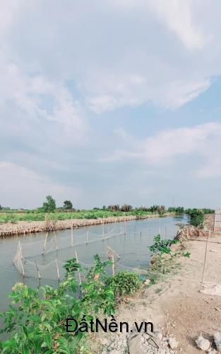 Đất vườn 3 mặt tiền sông đường ô tô xã Phước Khánh cách Q2 15 phút