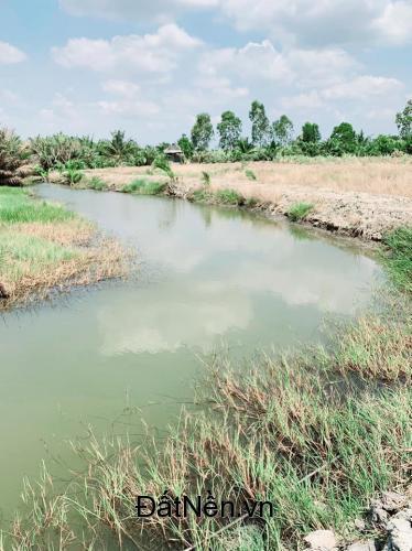 Bán đất vườn xã Phước Khánh giá rẻ đường ô tô tới đất, điện nước đầy đủ
