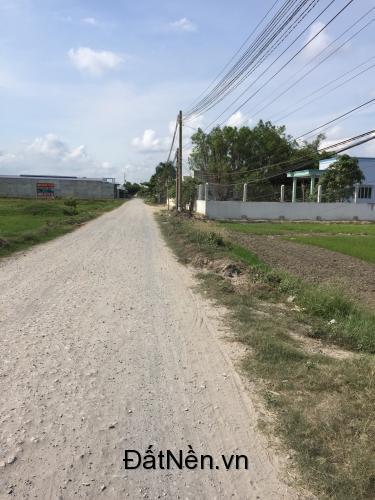 Bán đất chính chủ thị trấn Đức Hòa, SHR, thổ cư 100%