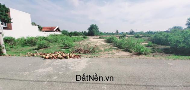 Nhượng lại lô biệt thự ven sông Phú Đông 312m2 (10x31) SHR