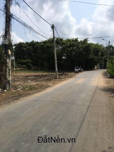 Bán gấp lô đất  1700m2 MT  Xã Tân Qúy Tây, Bình Chánh giá 4,5tr/m2