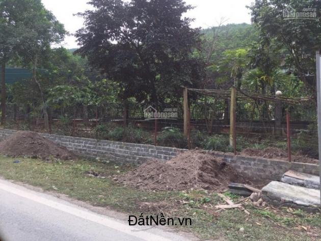 bán 2.5 ha đất thổ cư và đất rừng sản xuất tại huyện kỳ sơn tỉnh hòa bình