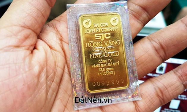 Đầu tư đất vàng du lịch sang tên công chứng trong vòng 10 ngày giá chỉ từ 50 ngàn/ m2