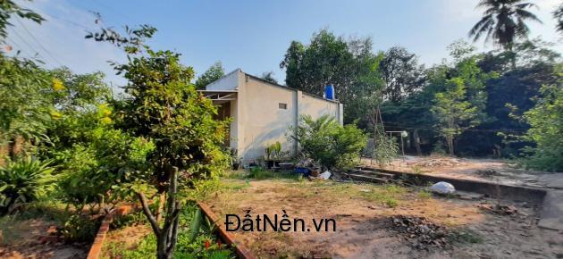 Chính chủ bán gấp đất vị trí đẹp ở tỉnh Tây Ninh
