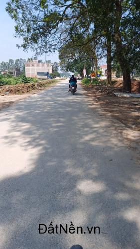 Cần bán mảnh đất tại thôn Đại Từ, xã Đại Đồng, Văn Lâm, Hưng Yên: lh 0835459289