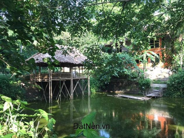 5000m2 Biệt thự nghỉ dưỡng Lương Sơn đầy đủ hồ ao câu cá, nhà sàn, bể bơi Liên hệ 0977.503.268