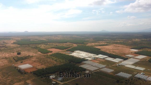 Bán đất nền trang trại, nông nghiệp ở Bắc Bình-Bình Thuận