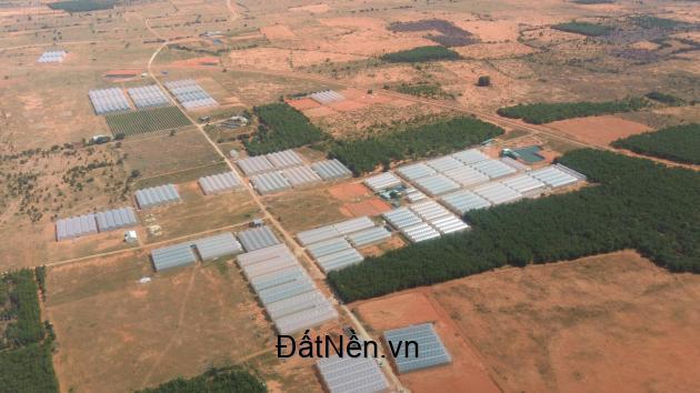 Đất Bình Thuận Trang Trại giá rẻ