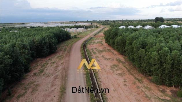 Nam Á Garden Đất vườn đầu tư Bắc Bình-Bình Thuận(Sổ Đỏ) giá chỉ từ 50.000vnđ/m2