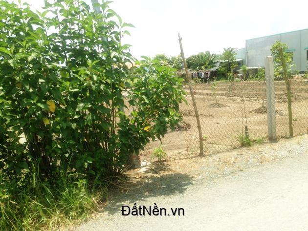 114 m2 đất thổ đường ô tô Cần Giuộc, kcn Cầu Tràm giá 800 tr