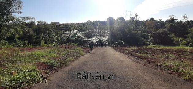 Bán đất đường Phó Đức Chính, Đam Bri, Tp. Bảo Lộc