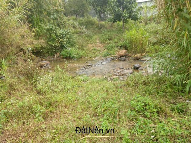 chuyển nhượng 35 ha đất làm dự án tại huyện kỳ sơn tỉnh hòa bình