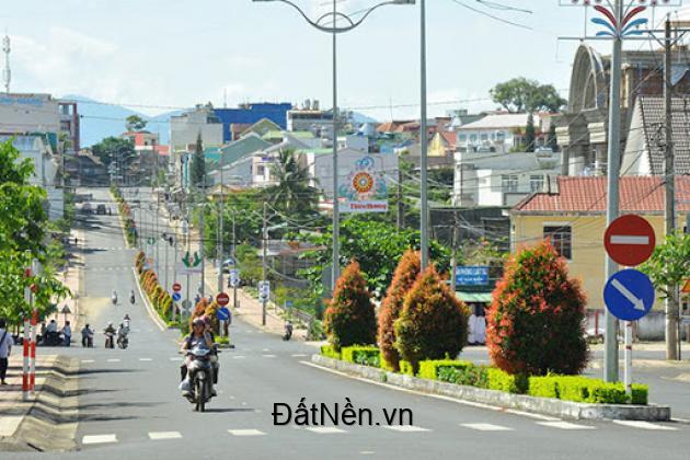 Bán 250m2 Đường Nguyễn Thái Học – Phường 2 – TP. Bảo Lộc
